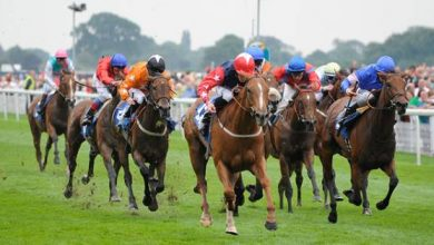 Photo of 2020 Cesarewitch Handicap Betting Developments and Free Suggestions