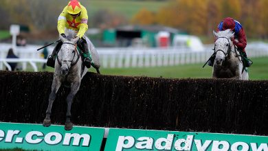 Photo of 2020 Paddy Energy Gold Cup Betting Traits and Free Suggestions