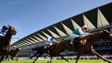 Photo of Royal Ascot Tips and Trends: DAY FIVE (Sat 19th June 2021)