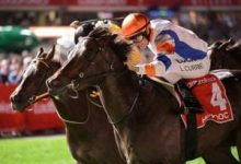 Photo of Doc Chasing Second Manikato Stakes Crown