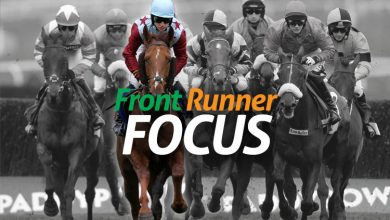 Photo of Entrance Runner Focus, discovering back-to-lay horses