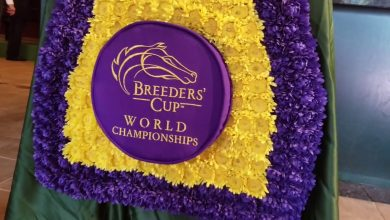 Photo of 2020 Breeders' Cup Betting Suggestions and Tendencies: Sat seventh Nov