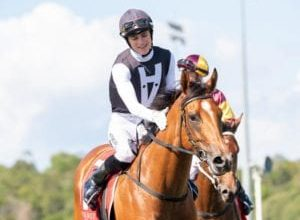 Photo of Isotope On Magic Millions Quest At Doomben