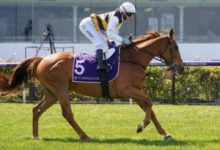 Photo of OTI Set For Two-Pronged Pakenham Cup Bid