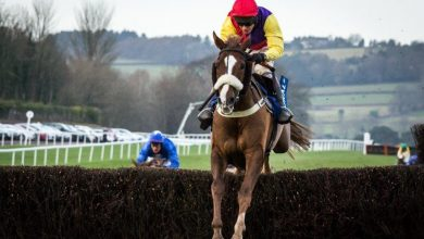 Photo of 2020 Welsh Grand National Free Tips & Trends