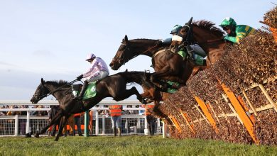 Photo of 2020 Greatwood Hurdle Betting Trends & Tips