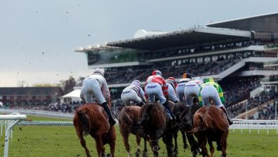 Photo of Cheltenham Horse Racing Tips and Trends: Friday 13th Nov 20