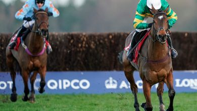 Photo of 2020 Tingle Creek Chase Free Tips and Trends
