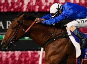 Photo of Godolphin Raiders Target Falvelon Quality