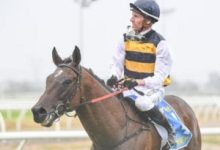 Photo of Rawiller's Holiday Rewarded With Cup Win