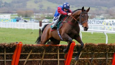 Photo of 2021 Paddy Power Stayers Hurdle Trends and Free Tips