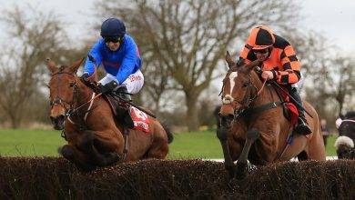 Photo of Free Horse Racing Tips and Trends: Sat 23rd Jan 2021