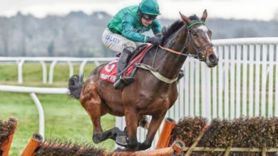 Photo of Lanzarote Hurdle Trends and Free Tips