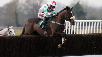 Photo of 2021 Haydock Grand National Trial Betting Trends & Free Tips