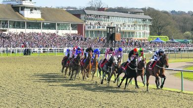 Photo of Lingfield TV Trends and Tips: Sat 13th Feb 2021