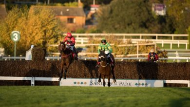 Photo of Free Horse Racing Tips and Trends: Sat 6th Feb 2021