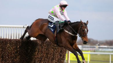 Photo of 2021 Champion Chase Trends and Free Tips