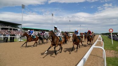 Photo of Free Horse Racing Tips and Trends: Sat 13th March 2021
