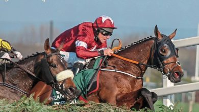 Photo of GRAND NATIONAL FESTIVAL BETTING GUIDE 2021 – FREE COPY