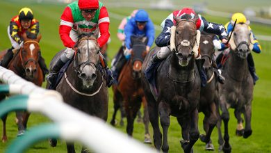 Photo of 2021 Lincoln Handicap Free Tips and Betting Trends