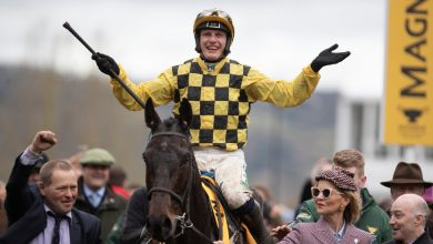 Photo of Cheltenham Festival 2021 – Bankers Or Blowouts?