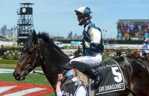 Photo of Sir Dragonet Expected To Find Form In Ranvet Stakes
