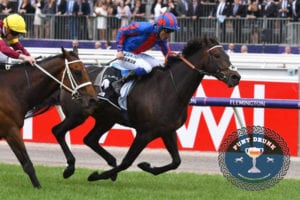 Photo of Prince Of Arran Has Melbourne Cup In His Sights