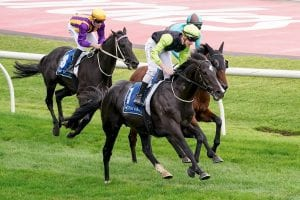 Photo of Persan to chase Easter victory at Caulfield