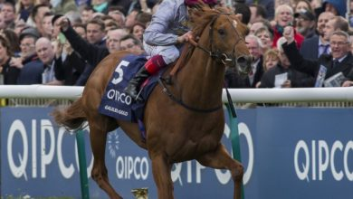 Photo of 2021 2,000 Guineas Free Tips & Betting Trends
