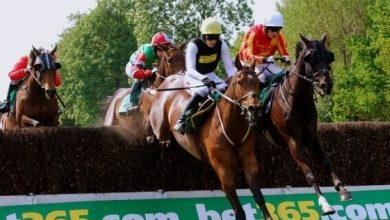 Photo of 2021 Bet365 Gold Cup Free Tips & Trends
