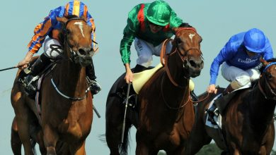 Photo of Free Horse Racing Tips and Trends: Sat 1st May 2021