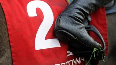 Photo of 2021 Punchestown Festival Tips and Trends (27th April – 1st May 2021)