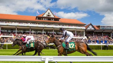 Photo of Free Horse Racing Tips and Trends: Saturday 12th June 2021