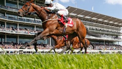 Photo of 2021 Dante Stakes Free Tips and Trends