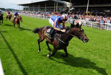 Photo of 2021 Irish 2,000 Guineas Free Tips and Trends