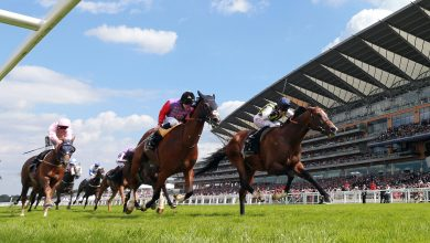 Photo of Free Horse Racing Tips and Trends: Sat 8th May 2021