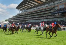 Photo of Royal Ascot Free Tips and Trends: DAY ONE (Tues 15th June 2021)