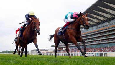 Photo of 2021 King George VI and Queen Elizabeth Stakes Betting Tips & Trends