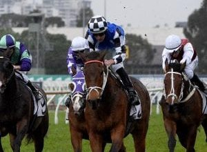 Photo of All Star Mile Winner Mugatoo Out With Tendon Injury