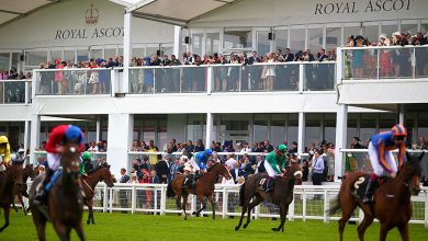 Photo of Royal Ascot Tips and Trends: DAY TWO (Weds 16th June 2021)