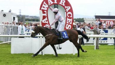 Photo of 2021 Galway Hurdle Free Tips and Trends