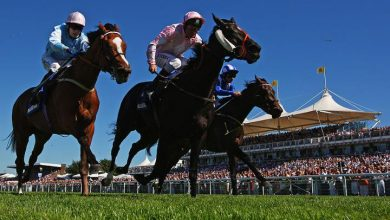 Photo of Glorious Goodwood Trends & Free Tips: DAY ONE (Tues 27th July 2021)