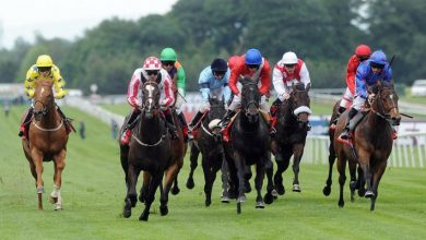 Photo of Glorious Goodwood Trends & Free Tips: DAY FIVE (Sat 31st July 2021)