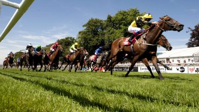 Photo of Newmarket July Meeting Trends & Tips – DAY ONE (Thurs 8th July 2021)