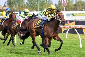 Photo of Thornton Claims Second Group 1 As Yearning Wins Thousand Guineas